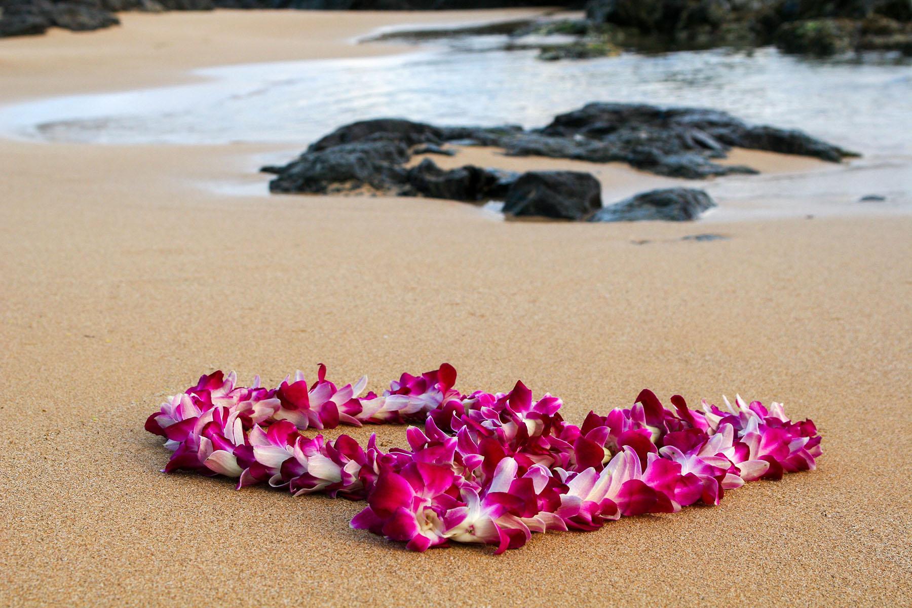 HAWAII-ORCHIDEÁK FÖLDJÉN